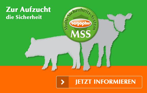 MMS - Zur Aufzucht die Sicherheit