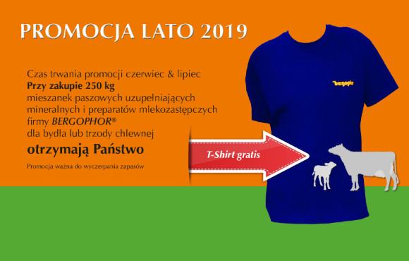 Promocja Lato 2019